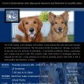Canadian Canine Good Citizen Test
